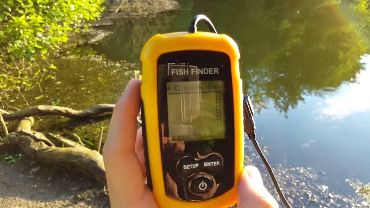 meilleur détecteur de poisson à main
