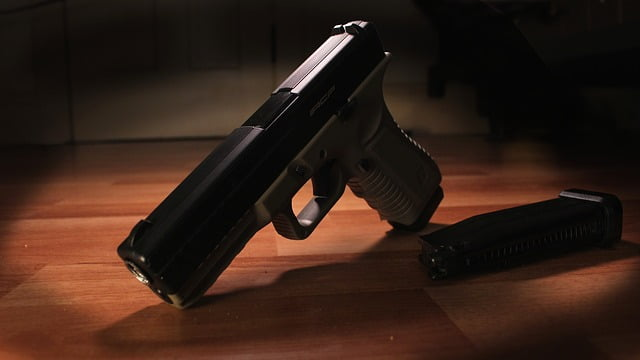 meilleurs livres sur les armes à feu